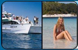 Hervey Bay Whale Watch Cruise plus Hervey Bay Accommodation Package Deal
