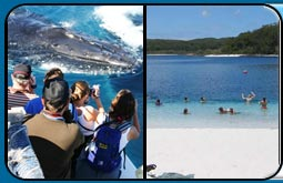 Hervey Bay Whale Watch Cruise plus Fraser Island 4WD Tour Package Deal